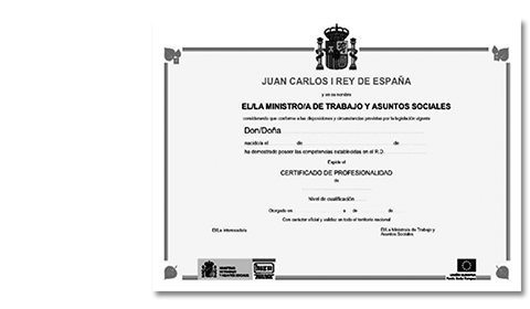 Publicada la Orden Ministerial ESS/1897/2013 de desarrollo del Real Decreto 34/2008 de los Certificados de Profesionalidad online yprivados